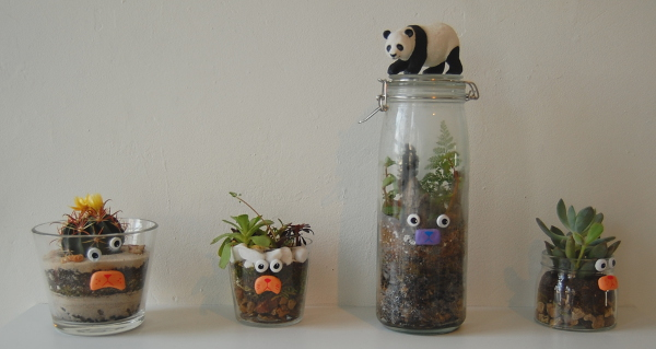 A selection of the terrarium art by Mandi Bompensa and NoseGo.